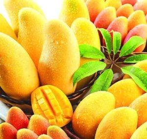 Выбираем манго — 100% метод